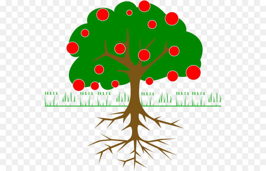 Trees Roots Leaves Trunk Diagram - Online Schematic Diagram •