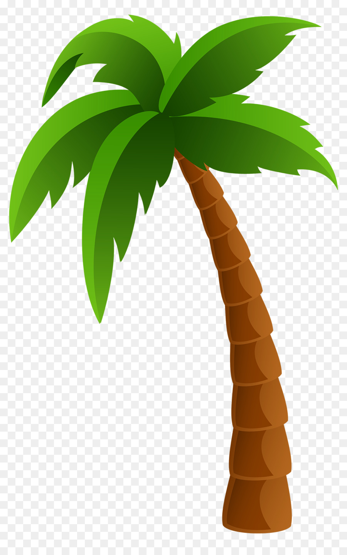 Arecaceae Clip Art Coconut Tree Decoration Png Download 1000