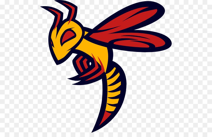 Charlotte Hornets Logo Clip Art Concepts Png Download 559562