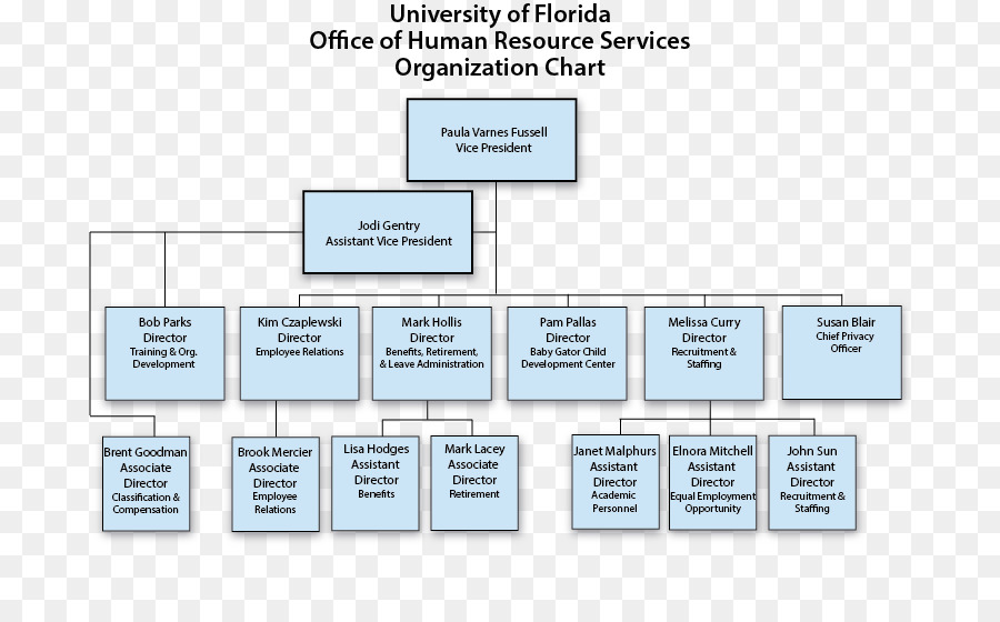 Organizational chart Organizational structure Human resource ...