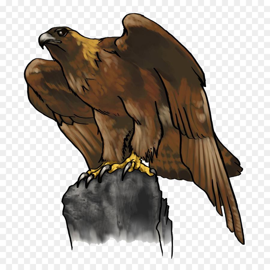 Águila calva Golden eagle Clip art - de dibujos animados de águila ...