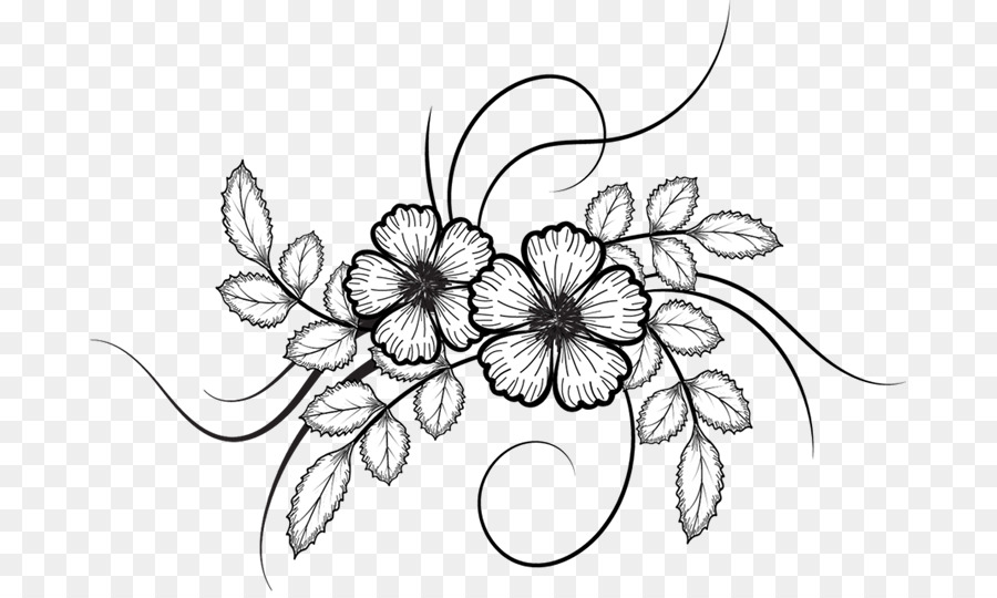 Flower Drawing Flower Sketch Png Download 737 534 Free