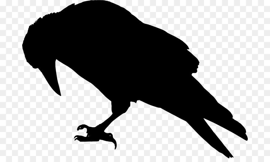 rook common raven bird crow clip art raven vector png download rh kisspng com  free clip art raven bird