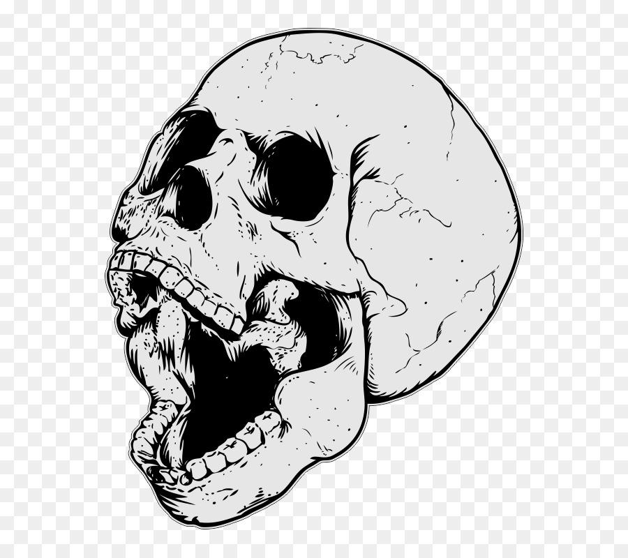 череп путанки в
