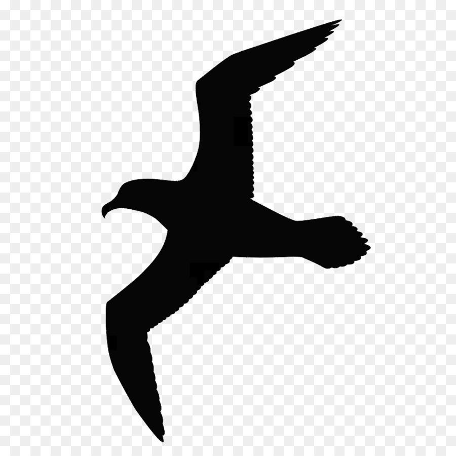 Las gaviotas Gran Pájaro negro-copia de gaviota Dibujo Clip art ...