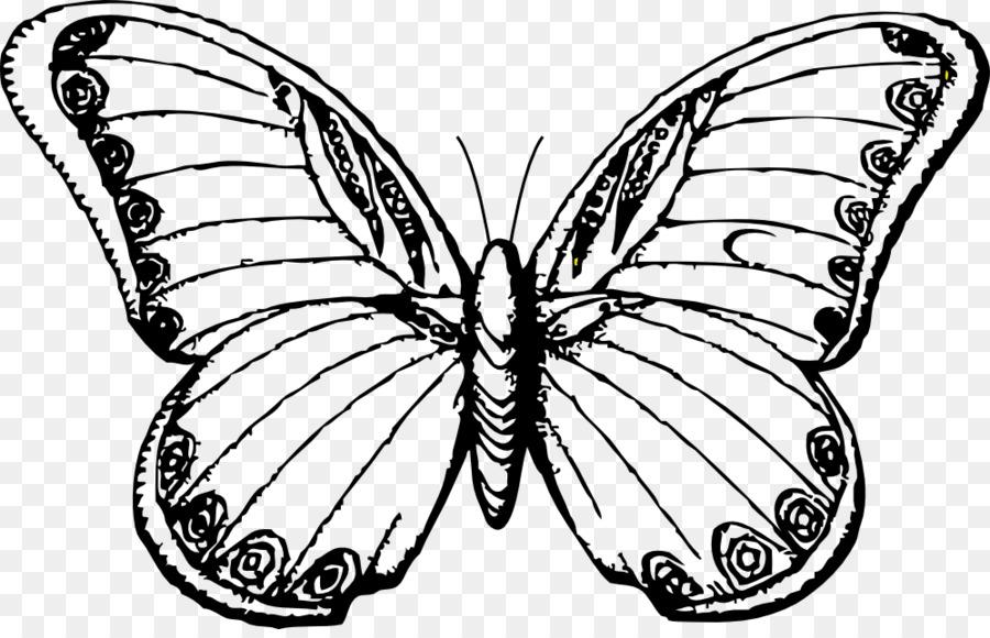 Mariposa de Dibujo de la Línea de arte en blanco y Negro imágenes ...