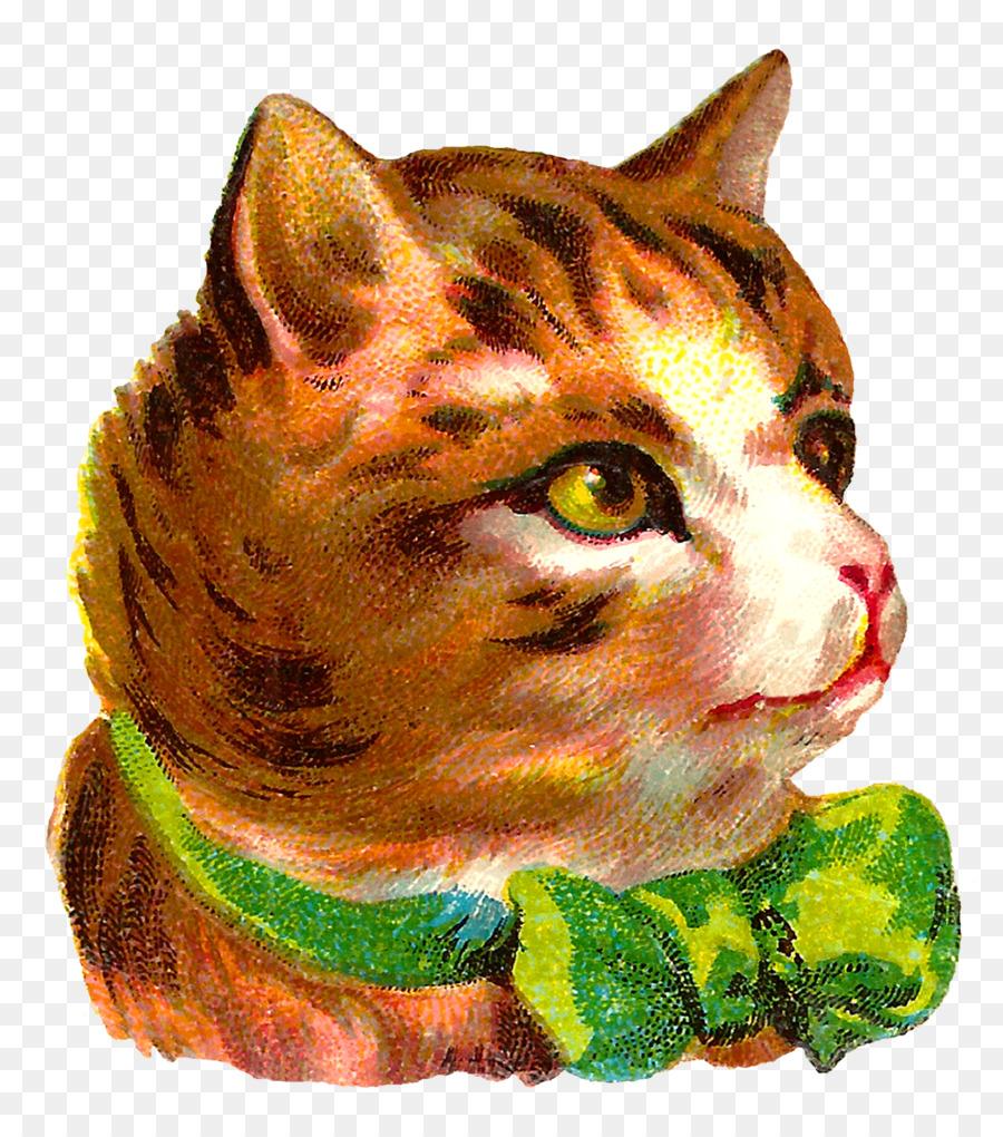 Tabby cat Kitten European shorthair American Wirehair Clip art - pet ...