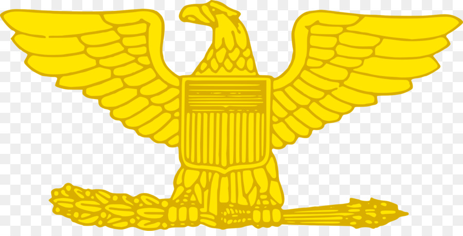 Lieutenant Colonel United States Marine Corps Rank Insignia Military