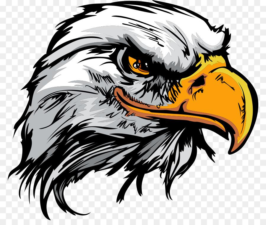 Bald Eagle Logo - cartoon eagle png download - 848*744 - Free ...