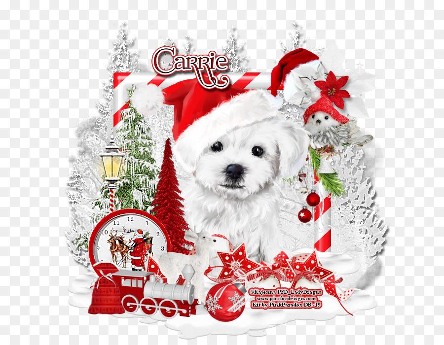 Dog breed Puppy Companion dog Christmas - creative christmas book ...