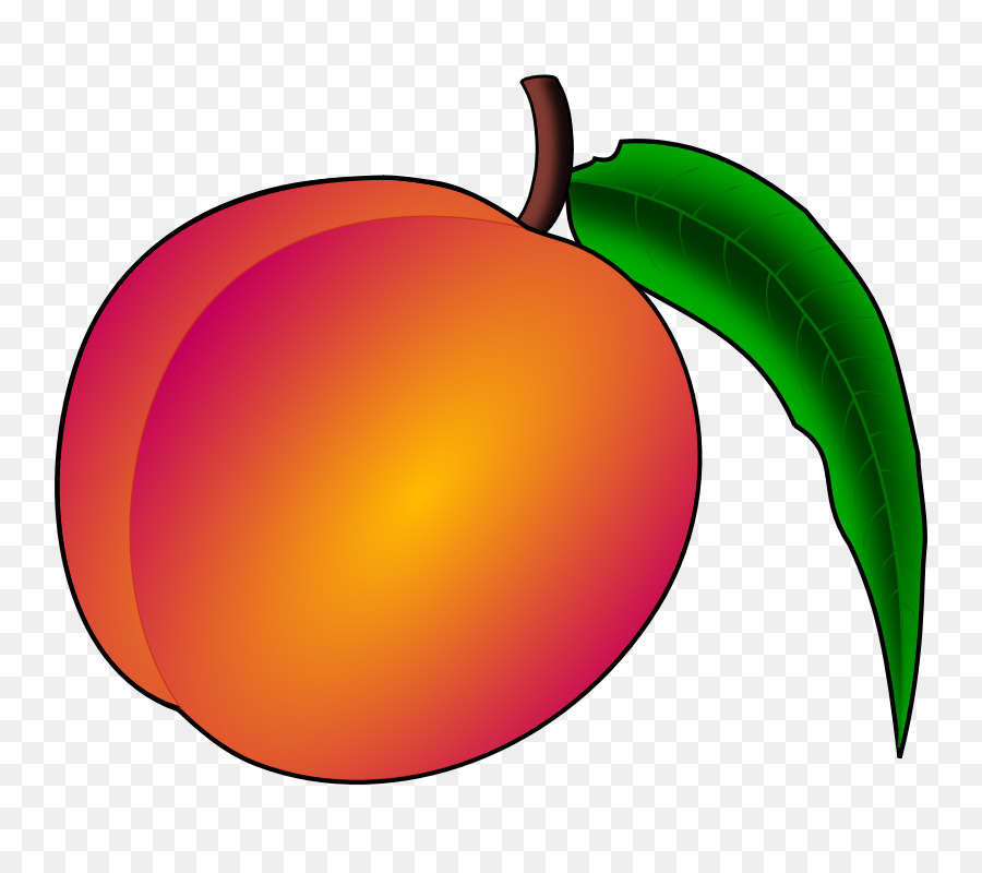 peach county georgia clip art peach clipart png download 800 rh kisspng com georgia peach clipart georgia peach clipart