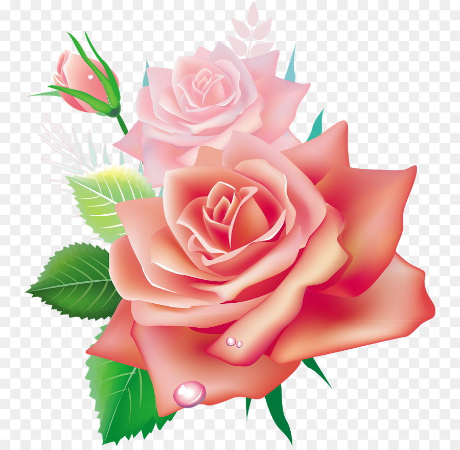 Garden roses flower pink clip art colored flowers png download garden roses flower pink clip art colored flowers mightylinksfo