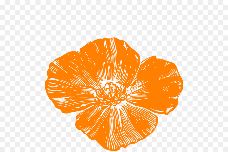 Remembrance Poppy California Poppy Clip Art Poppy Vector Png