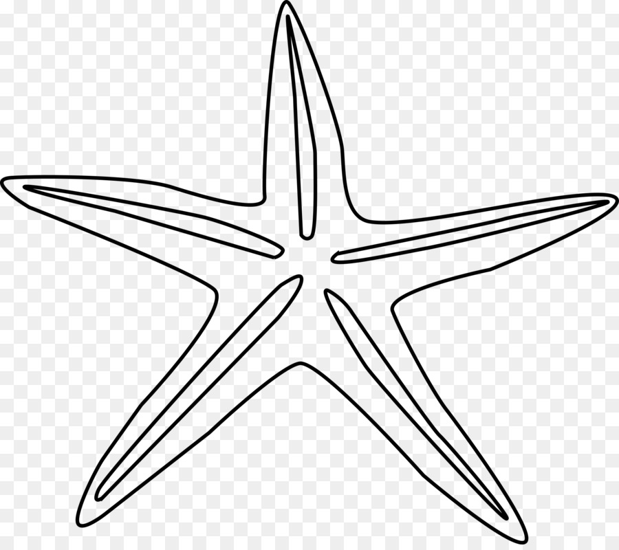 starfish drawing clip art details page photos png download 2400