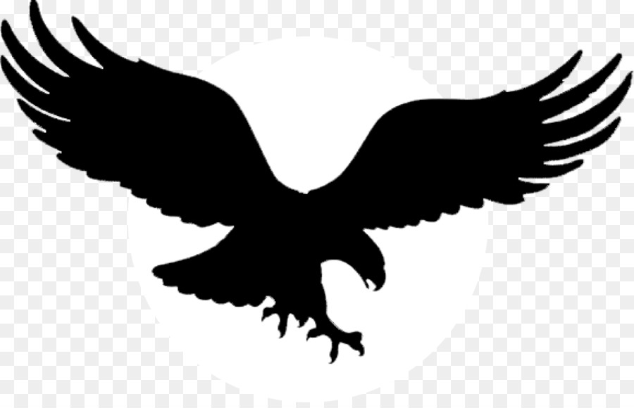 Águila calva Golden eagle Tatuaje águila Negra - con alas de águila ...