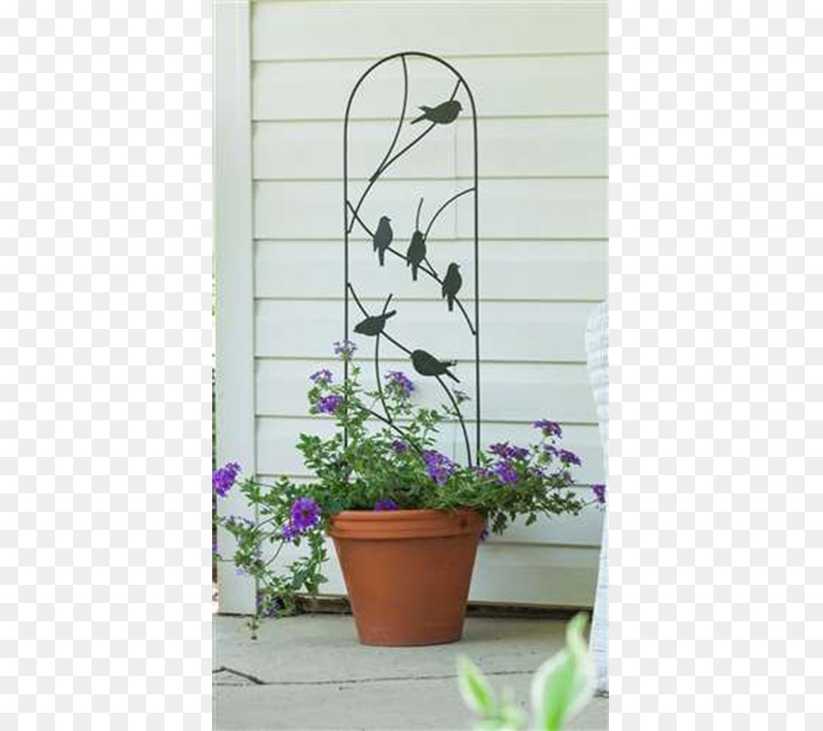 Trellis Flowerpot Gardening Vine   Pots