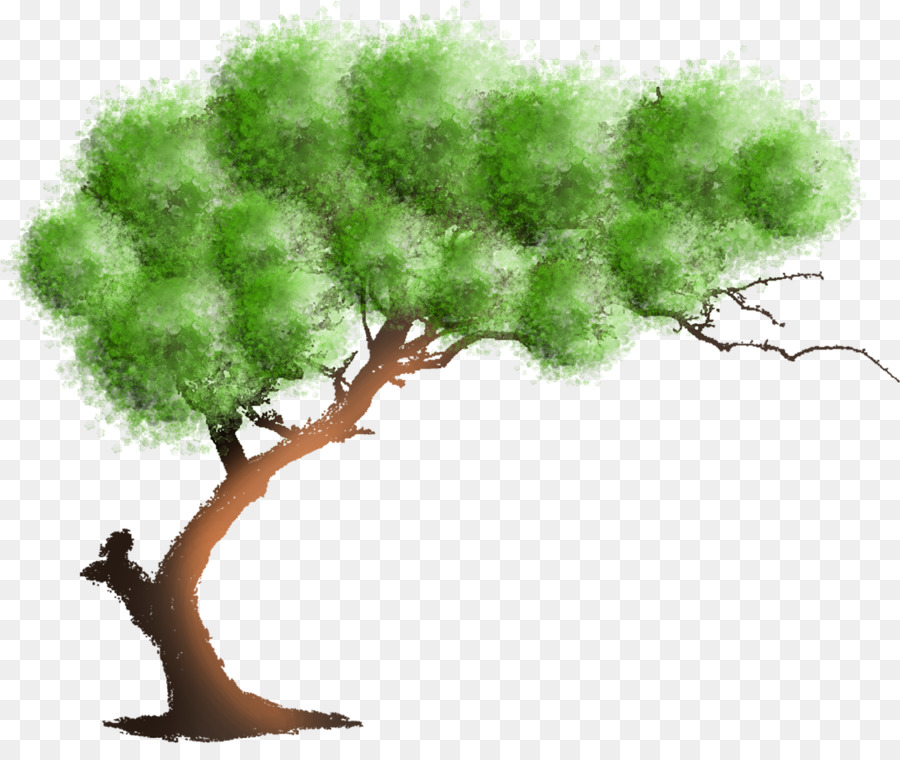 Family Tree Background Png Download 1200 991 Free Transparent