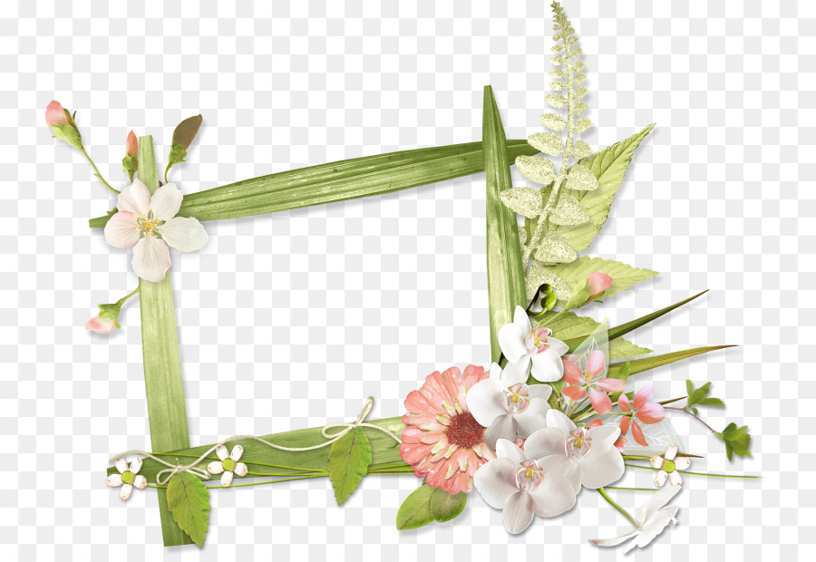 Picture Frames, Photography, Google Images, Plant, Flower PNG