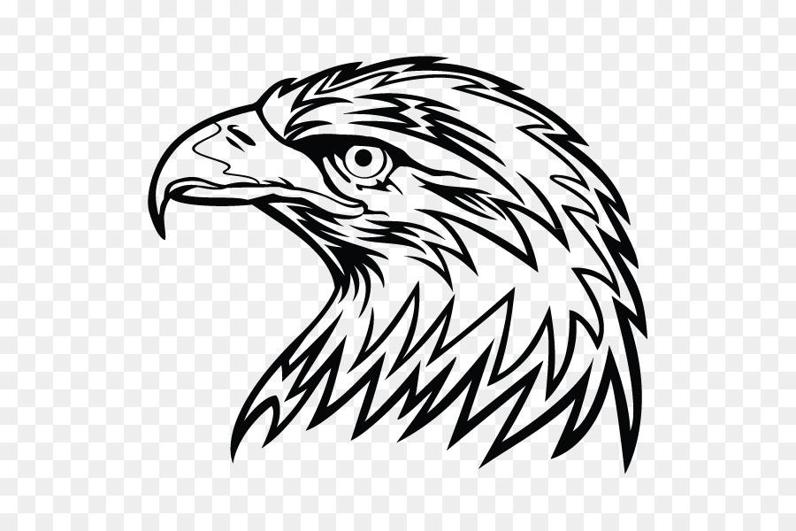 Águila calva Dibujo Clip art - pintado a mano de búho Formatos De ...