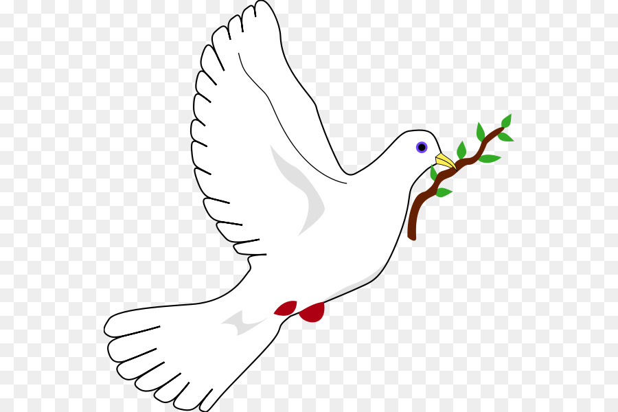 Columbidae Doves As Symbols Peace Symbols The Dove Of Peace Png