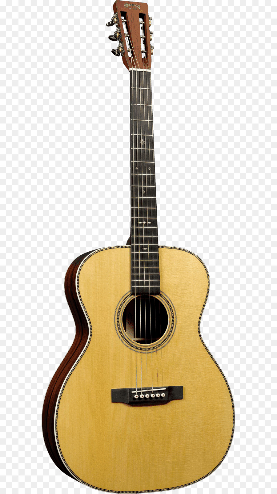 Steel-string acoustic guitar Parlor guitar C  F  Martin & Company