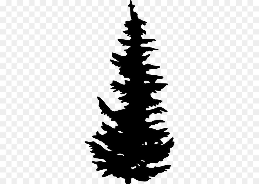 evergreen tree pine clip art pine vector png download 640 640 rh kisspng com evergreen tree clipart free evergreen tree clipart free