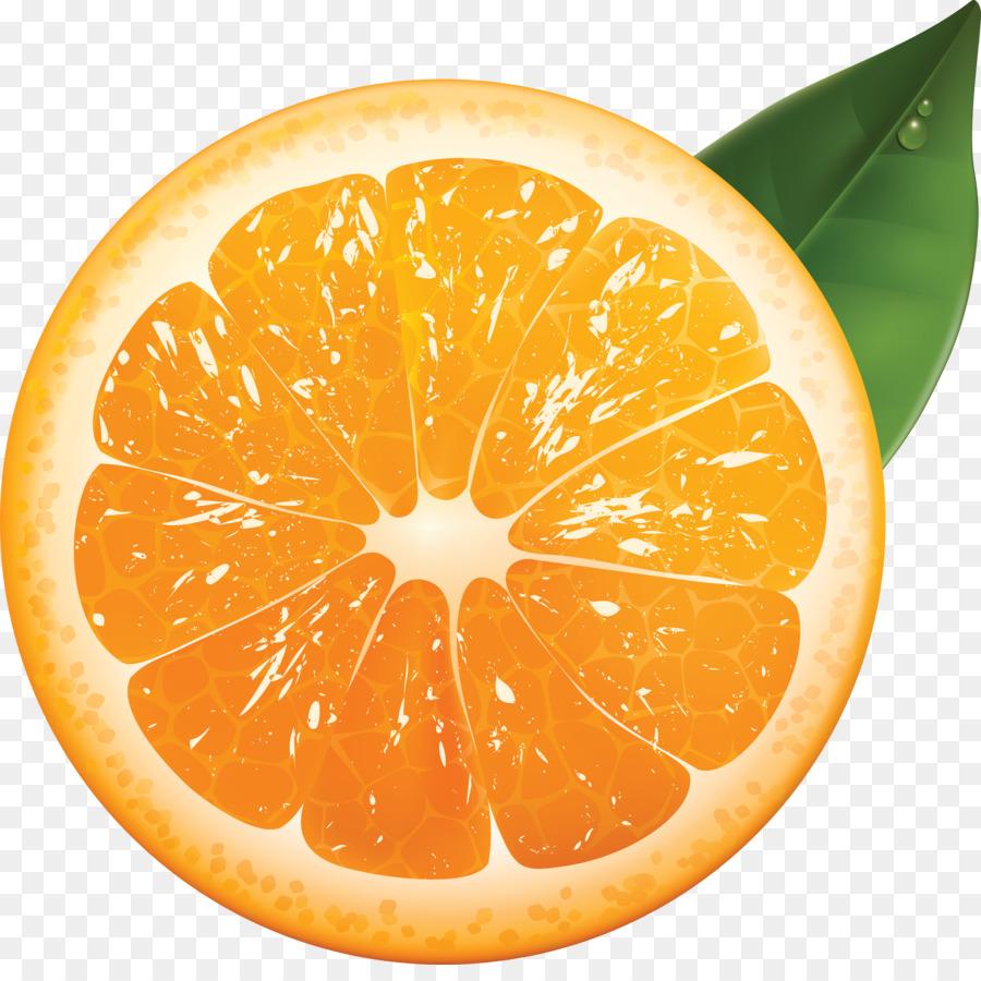 Orange Juice Tangerine Mandarin Paint