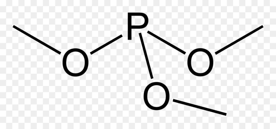 Functional Group Adenosine Triphosphate Phosphorus Organic Chemistry