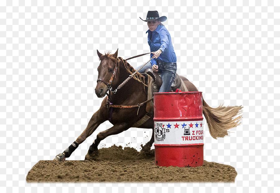 Barrel Racing Western Riding Rodeo Horse Equestrian