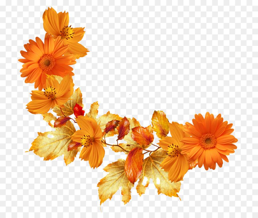 Hoja de otoño el color de la Flor Marcos Clip art - flores de color ...