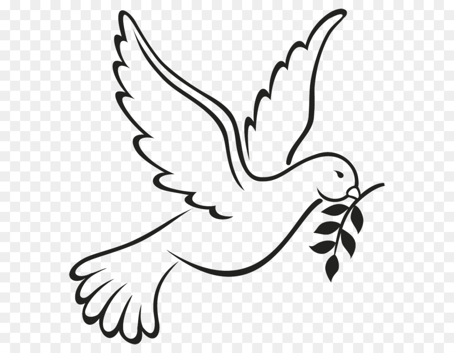 Columbidae Doves As Symbols Peace Symbols Drawing Flying Hope Png