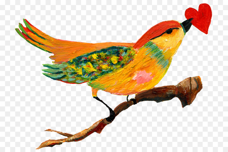 Bird anatomy Heart Feather Beak - birdcage and heart tree png ...