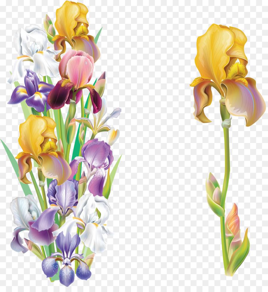 Iris versicolor iris flower data set clip art flower png download iris versicolor iris flower data set clip art flower izmirmasajfo