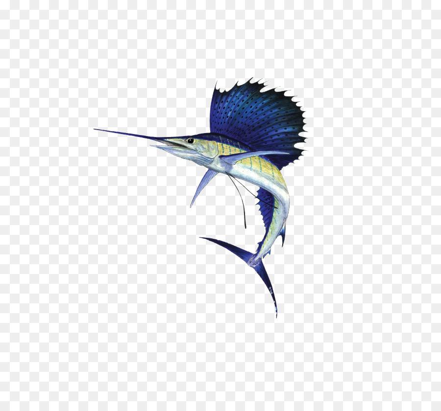 Atlantic Sailfish Fish png download - 669*821 - Free Transparent