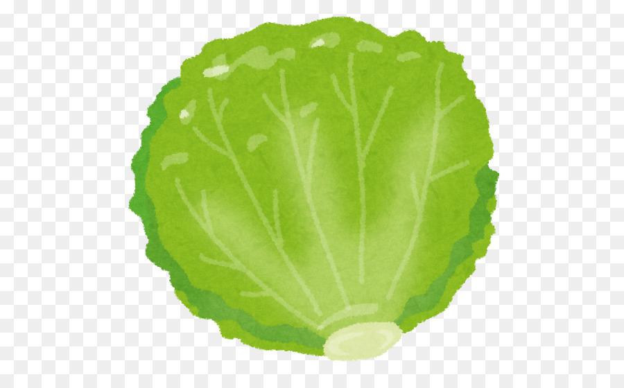 red leaf lettuce food vegetable nutrition lettuce clipart png rh kisspng com lettuce clipart png clipart lettuce leaf
