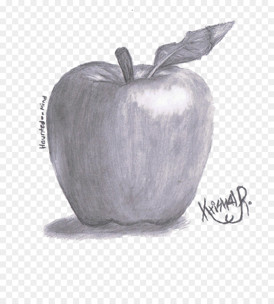 Apple pencil drawing sketch shading vector