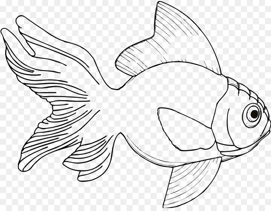 Drawing Fish Coloring Book Clip Art
