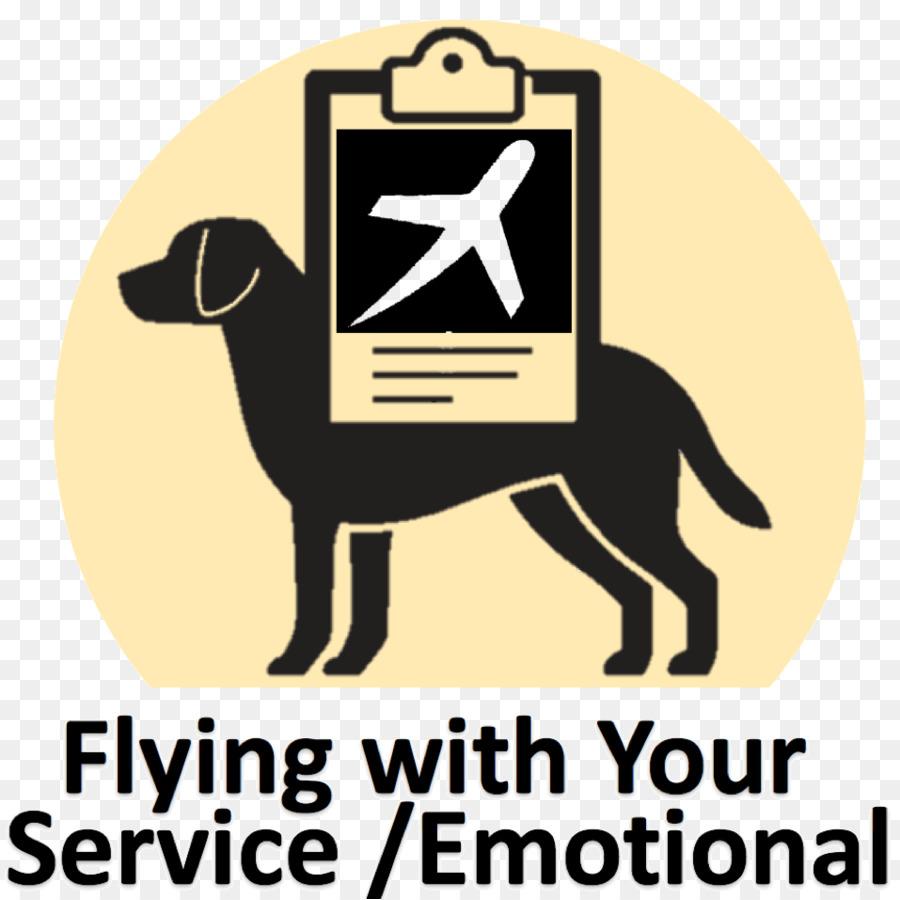 labrador retriever service dog therapy dog emotional support animal
