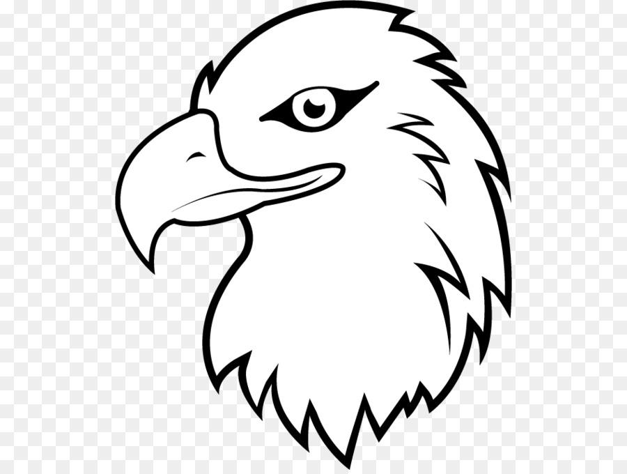 Águila el Águila de cola Blanca de dibujos animados Clip art - lindo ...