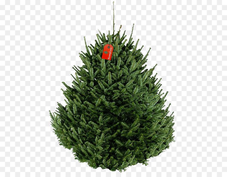 fraser fir artificial christmas tree new year tree decorative trees - Fraser Fir Artificial Christmas Tree
