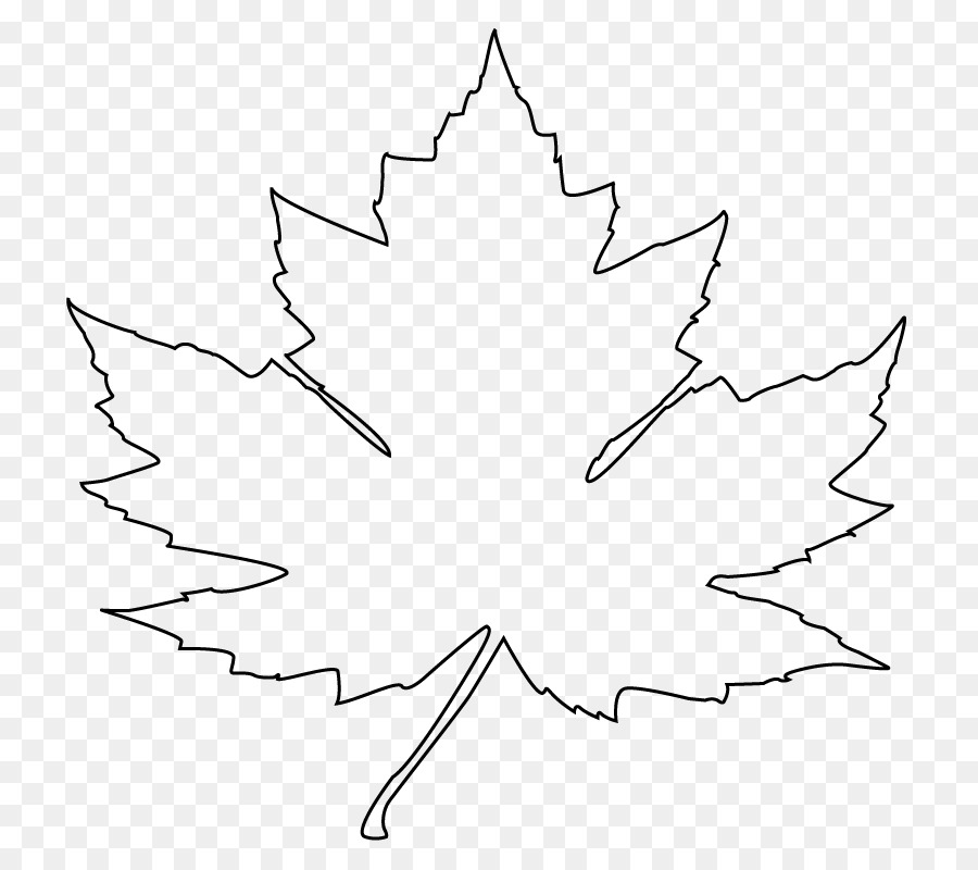 maple leaf drawing flag of canada clip art leaf outline