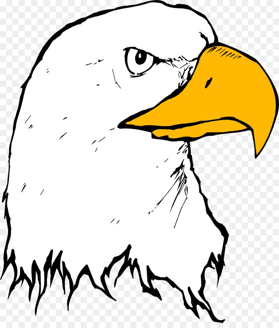 bald eagle beak clip art eagle clipart png download 2040 2366 rh kisspng com free eagle clip art images free eagle clipart baseball downloads