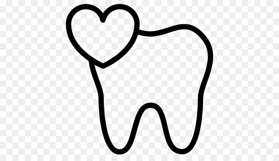Odontología primer molar Maxilar diente Humano - anatómica vector de ...
