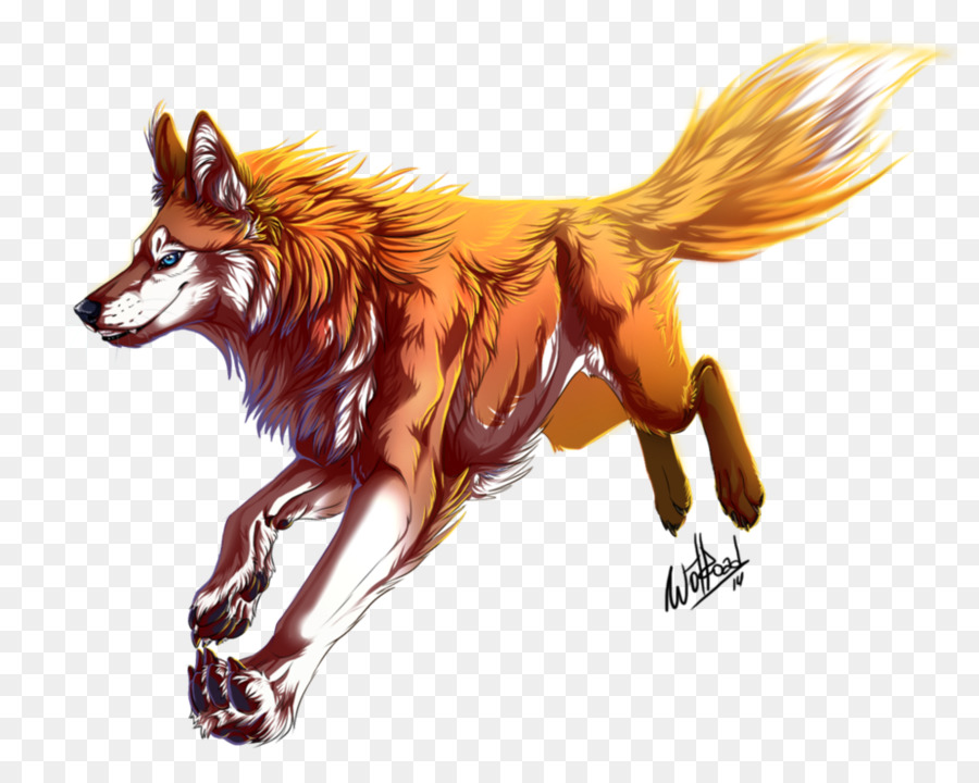 Red Fox Zeichnung Deviantart Grau Wolf Rothaarige Png