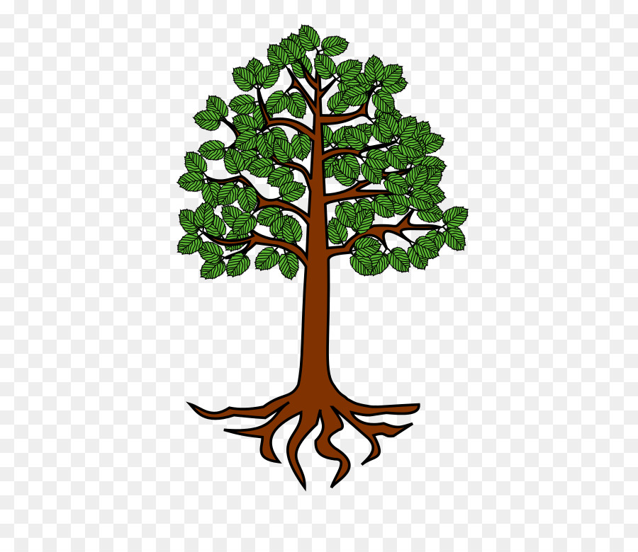 tree root trunk clip art root png download 698 768 free rh kisspng com free clipart tree with roots tree branches and roots clip art