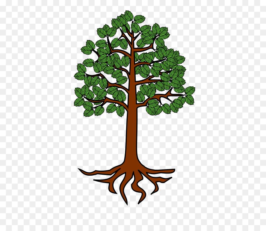 Tree Root Trunk Clip Art Png 698 768 Free Transpa