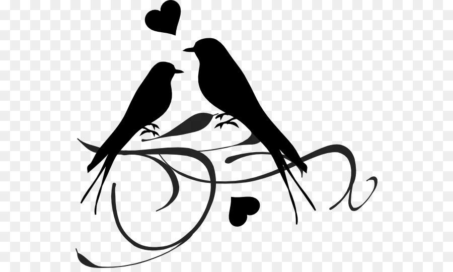 Wellensittich Hochzeit Clip Art Brautpaar Illustration Png