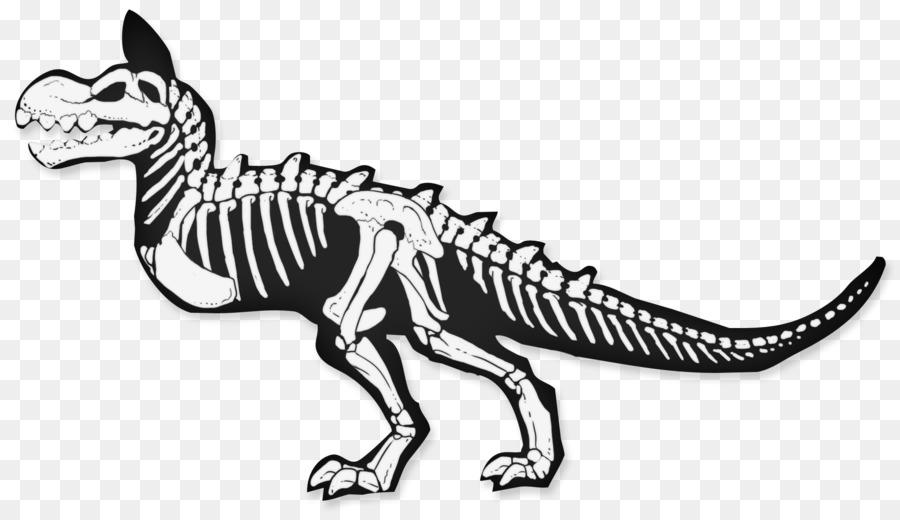 Skelett-Zeichnung Monster Schädel - Eidechse png herunterladen - 900 ...