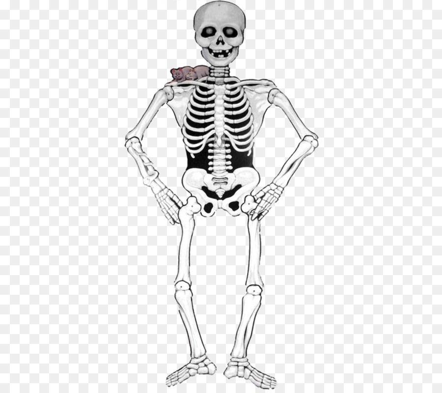 Esqueleto De Halloween Smiffys Carnaval De Papel - tarjetas de ...