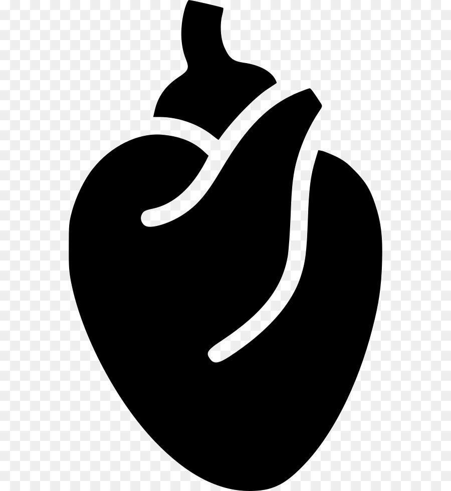 La anatomía de los Iconos de Equipo Corazón Clip art - anatomía de ...